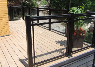 Glass with dlb hand rail